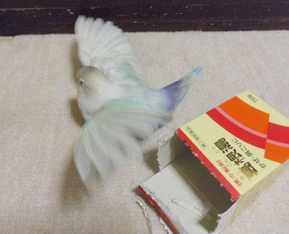 Haku702